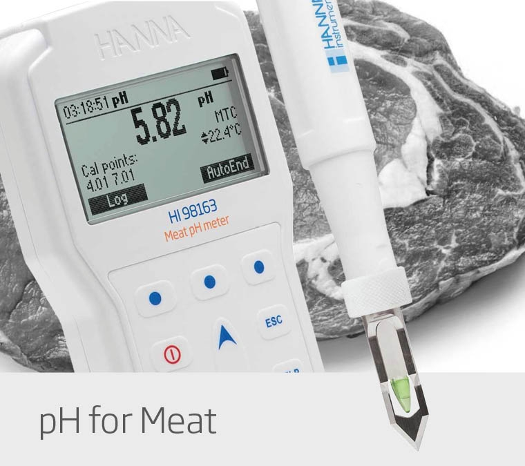 pH Meter for Meat